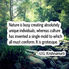 Relax and Succeed - Nature is busy creating absolutely unique individuals