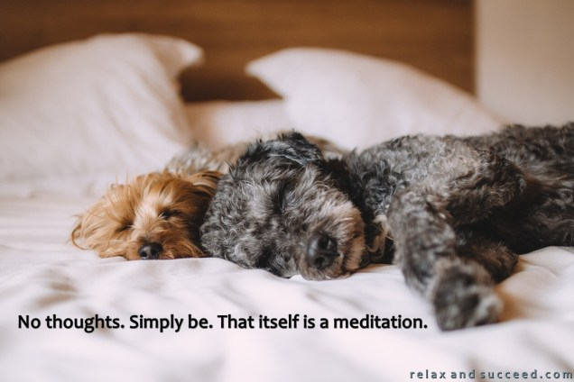 1282 Relax and Succeed - No thought. Simply be. That itself is a meditation
