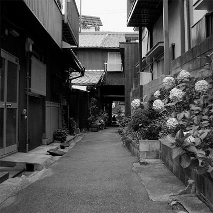 nakazaki_img06