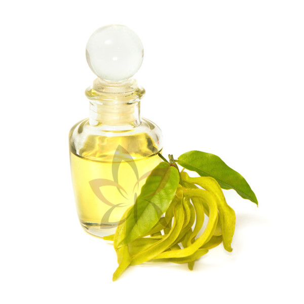 huile essentielle de ylang-ylang