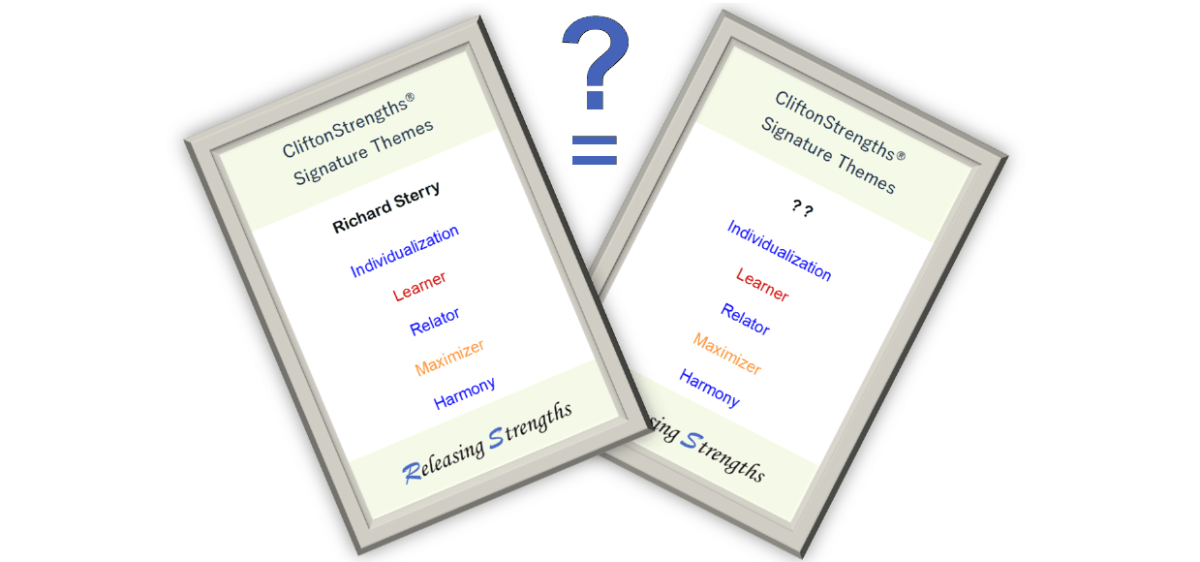 Strengths twin strengthsfinder same top 5 themes search find match unique