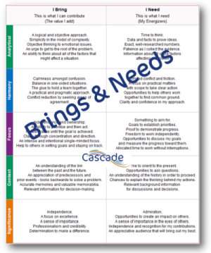 Clifton Strengths Brings Needs Cascade report