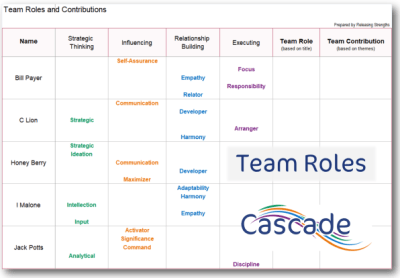 Team Roles and Contributions