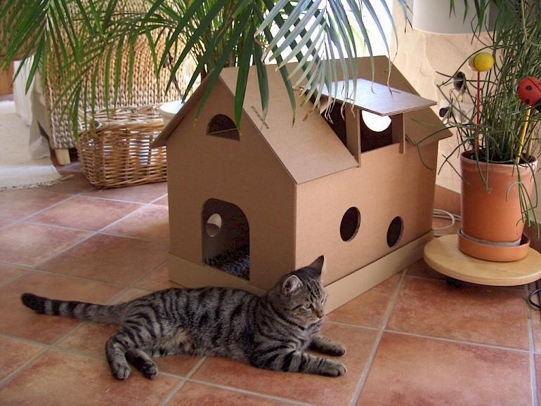 Karton Cat House.