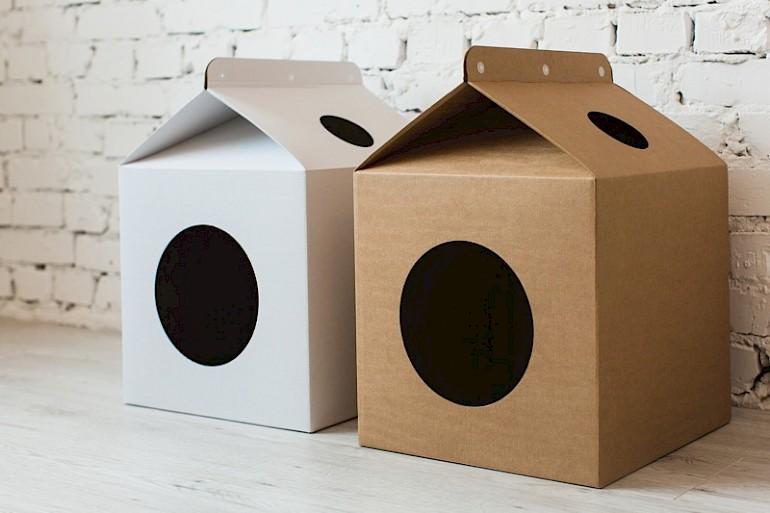 Casa simples para gatinho fora da caixa