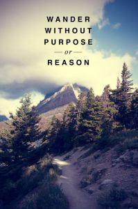 Without Purpose or Reason…
