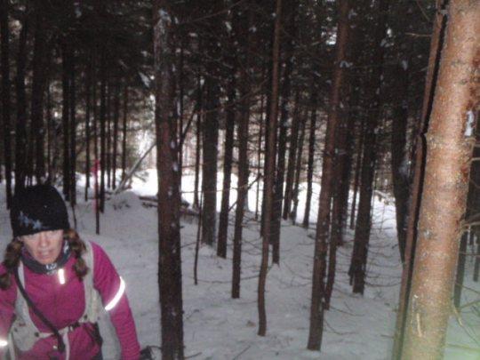 Peak Snowshoe Race