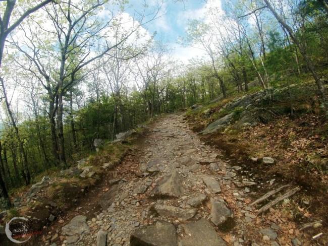 Vermont Trail