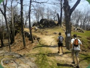 7 Sisters Trail Race – 2015 Recap