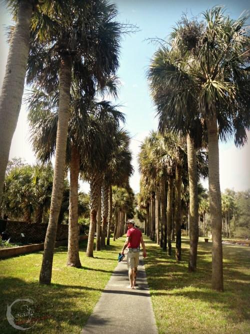 Palmetto Garden Brookgreen Gardens