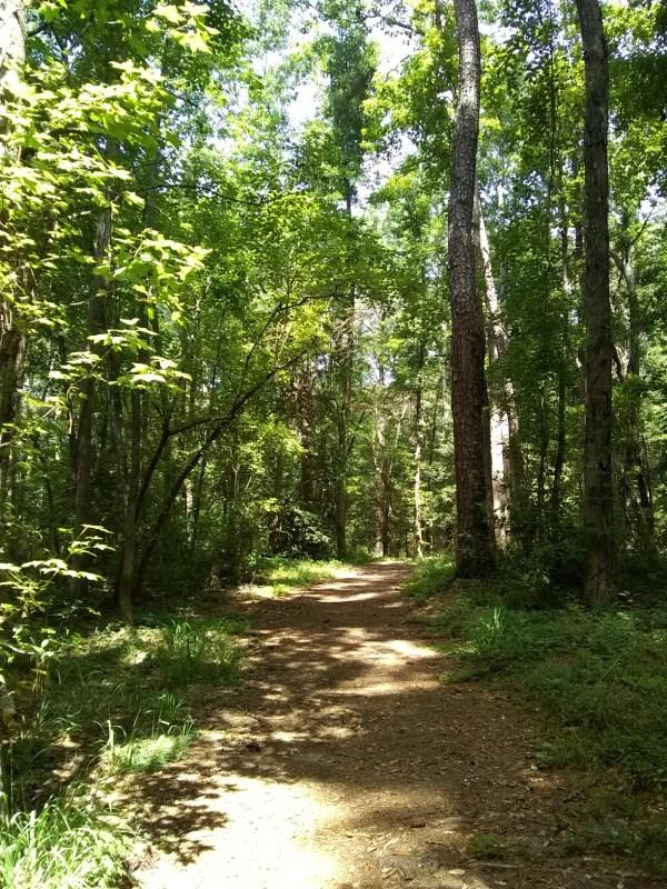Trail Running in Myrtle Beach Cox Ferry Lake Recreational Trail