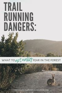 Trail Running Dangers:  8 Things I Actually Fear in the Forest