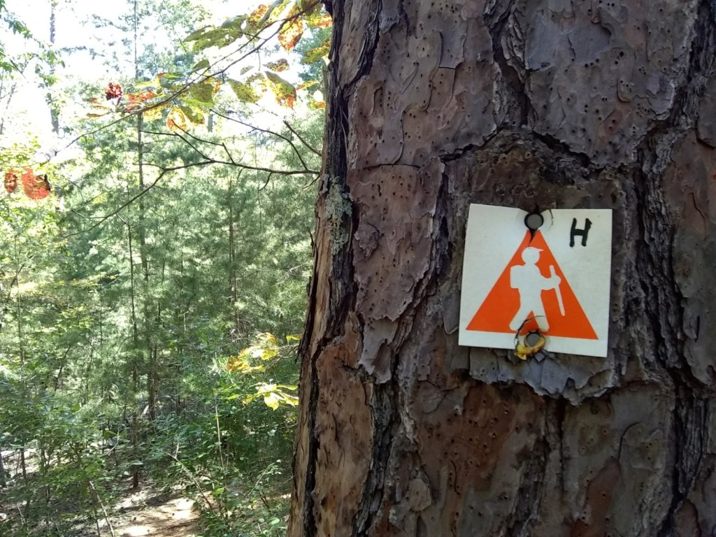 Trail blazes at Morrow Mountain State Park