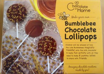 bumblebee chocolate lolly making kit