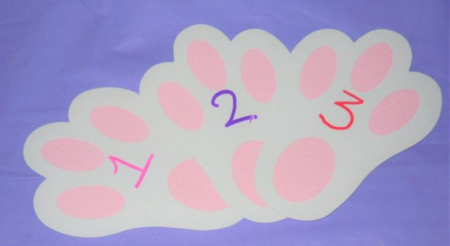 Numbering Bunny Footprints with Posca Pens