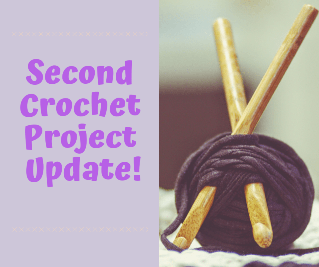 Second Crochet Project Update