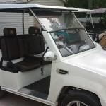 Custom Cart Cadi