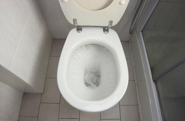 toilet repaired by loveland CO plumber