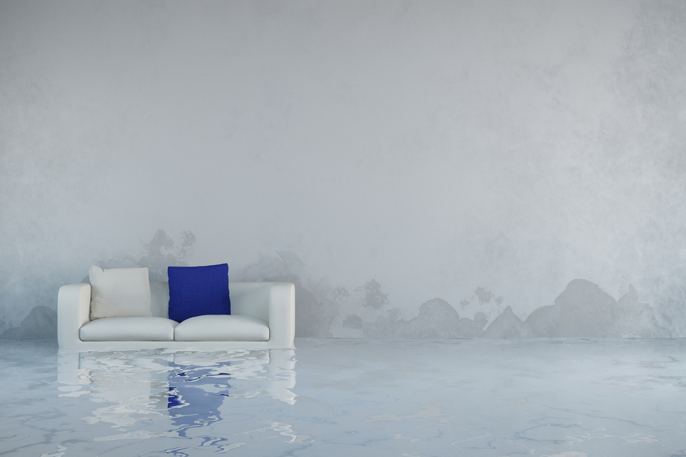 image of a living room in need of water and sewage cleanup in loveland, co