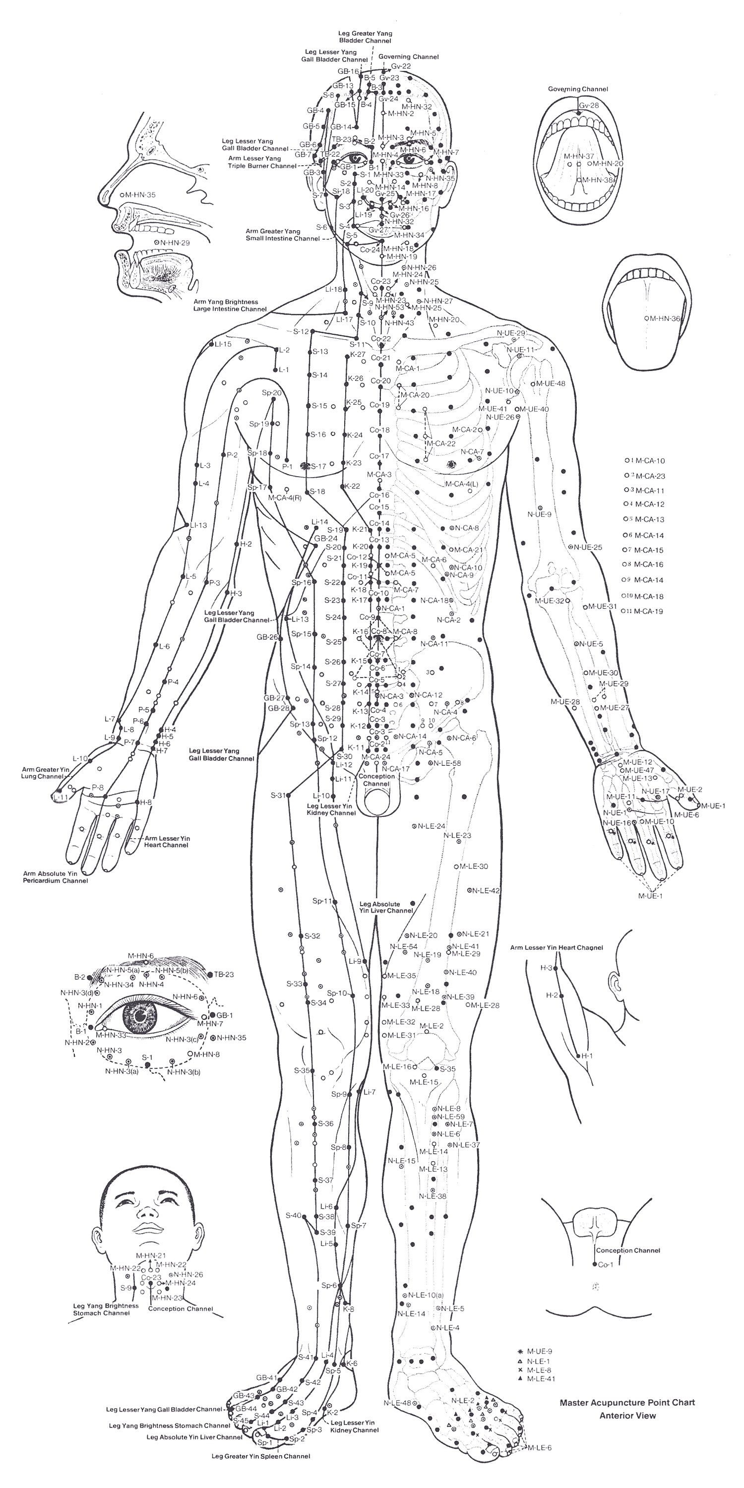 Acupuncture Points Chart Front