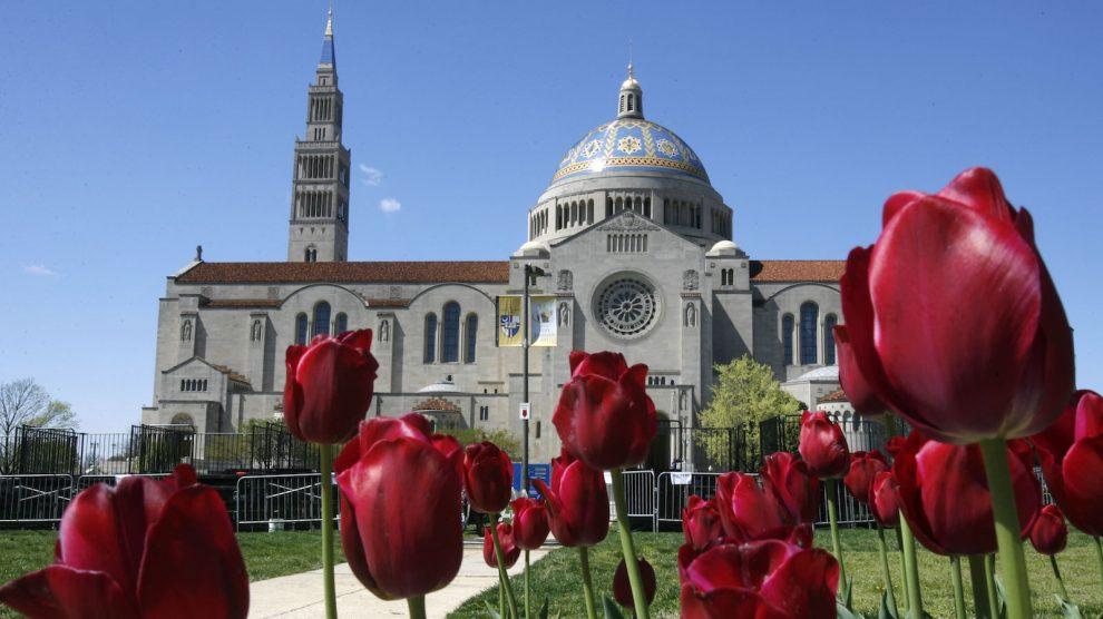 A battle over Catholic identity at Catholic University