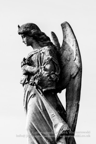 Cemetery Statue of an Angel