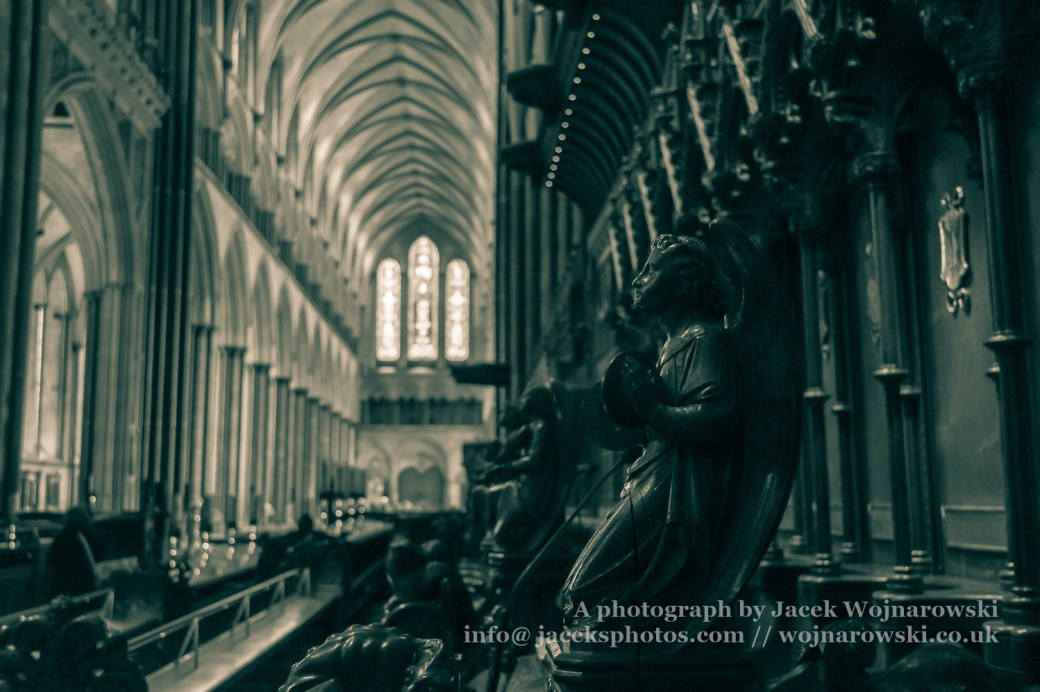 Poppy Head Bench End B in Salisbury Cathedral