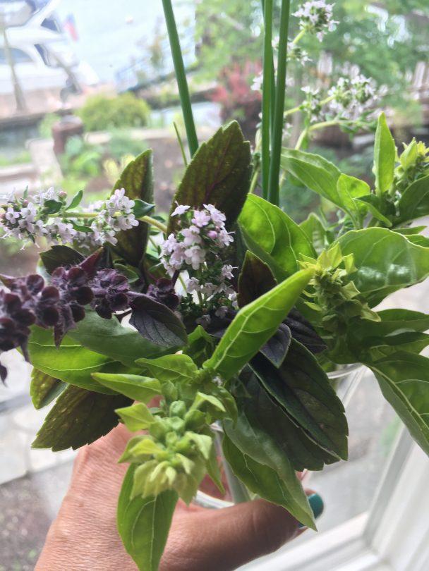A bouquet of herbs.