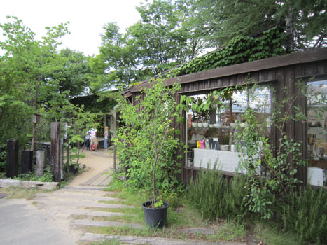 kuruminoki_shop