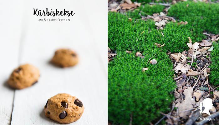 Kürbiskekse und ein paar Herbstimpressionen | relleomein.de