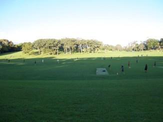 """Auckland Domain - Sport auf der """"Hauptwiese"""""""