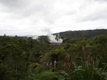 Te Puia - Tal und beide Geysire