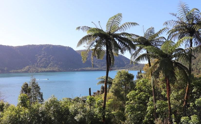 Zurück am Lake Tarawera