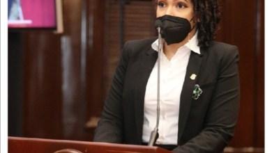 Photo of Chequea el outfit de Juliana O'Neal en la Cámara de Diputados y a lo que se opuso