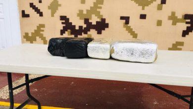 Photo of CESFRONT decomisa 25 libras de presunta marihuana en Pedernales