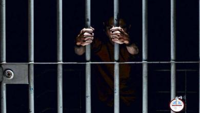 Photo of Casi 5 años de cárcel para hombre que envió rata muerta a su exesposa en EEUU