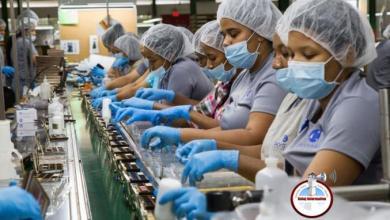 Photo of Solo 65,065 trabajadores cobraron FASE 1 en enero