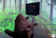Photo of Una empresa de Elon Musk muestra a un mono jugando a un videojuego con la mente mediante un chip cerebral