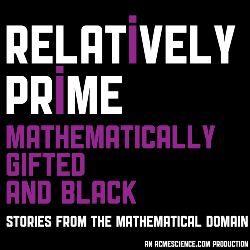 Relatively Prime Mathematical Gifted and Black  Stories from the mathematical domain an acmescience.com production