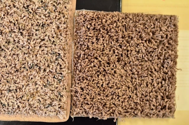 Smartstrand Carpet Colors Styles