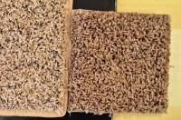 Smartstrand Carpet Colors Styles - Carpet Vidalondon