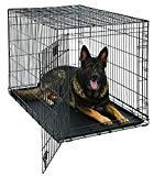 Funda para perro XL | MidWest Life Stages - Estuche plegable para perros de metal | Panel de separación, pies protectores de piso, bandeja de fugas para perros | 48L x 30W x 33H pulgadas, raza de perro XL