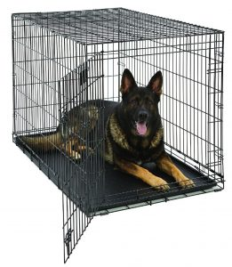 Cama plegable de metal para perros Mid-West Life Stages