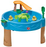 Paso 2: Duck Pond Water Table