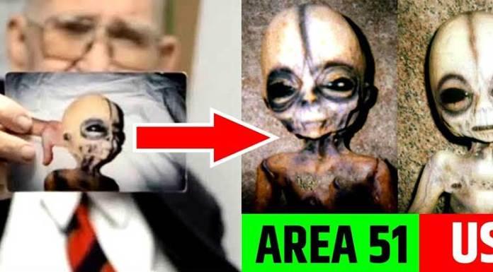 aliens area