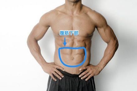 腹筋下部を鍛える