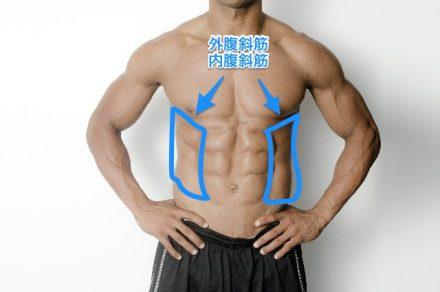 外腹斜筋・内腹斜筋を鍛える