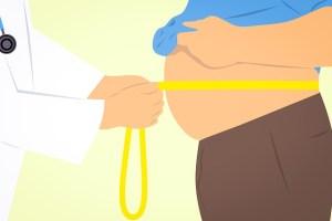 内臓脂肪と皮下脂肪の見分け方と落とし方