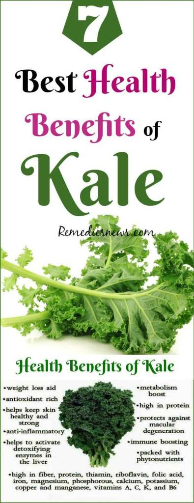 7 Best Health Benefits of Kale and Kale Smoothie