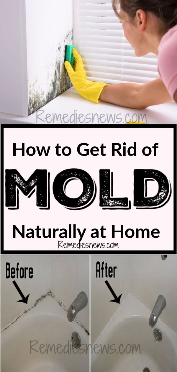 How to Get Rid of Mold Naturally at Home: Try this home remedies to remove black mold and wildew on the wall, basement, in bathroom, ceiling, wood, carpet and window at home
